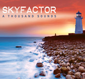Sky Blues guitarists/bassists Jon Rubin and Cliff Rubin's new band SKYFACTOR